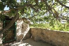 Les paysages viticoles du Languedoc-Roussillon, Méditerranée. Photo Serge Briez, Cap médiations pour Vin4 heures tour