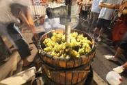 La fête des vendanges à Port Leucate Photo Serge Briez Cap médiations pour Vin4 heures tour